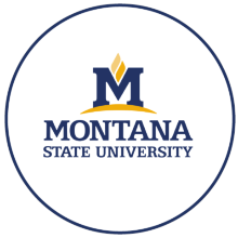 Logo of the Montana State University (USA)